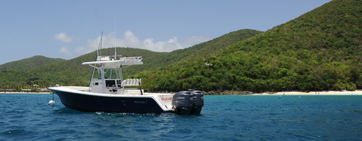 Rockhoppin' Powerboat Charters USVI and BVI