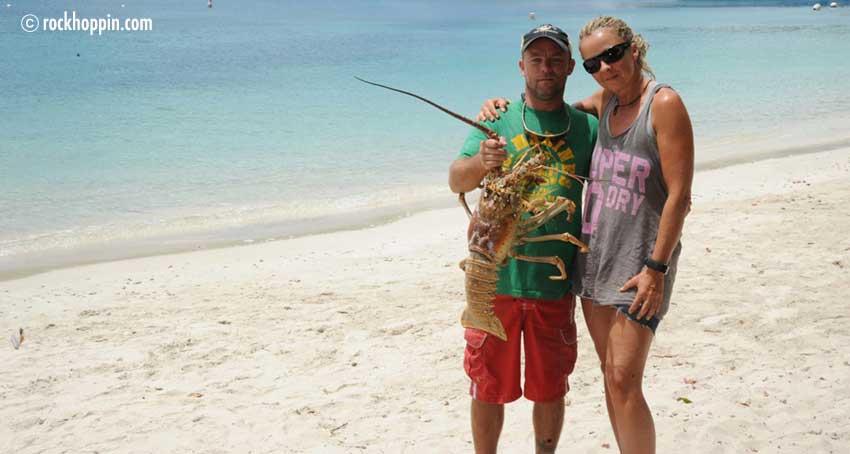 lobster-steve