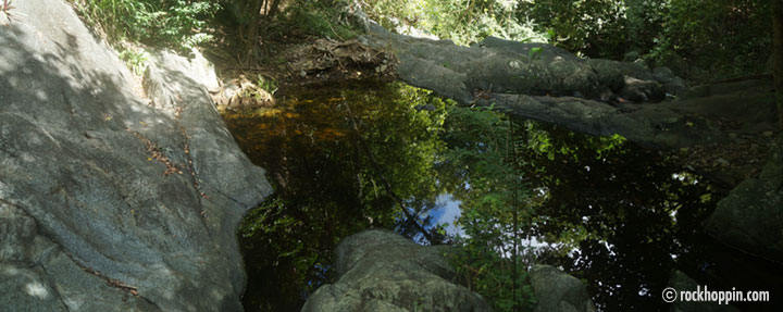reef-bay-hike-sweet-water-pool-stjohn